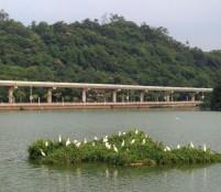 DaHu Park 3