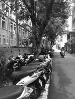 Street 16