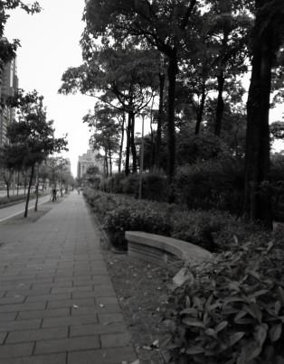 Street 41