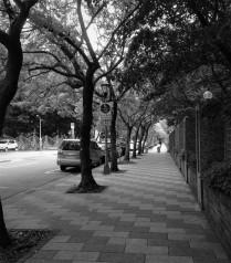 Street 58