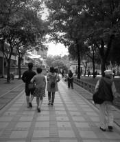 Street 64